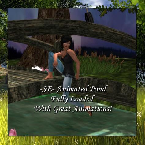 -SE- Animated Pond-4